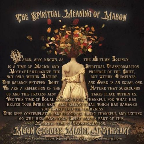 de1bf31b680bb3ca996463b0bc156c2b--spiritual-meaning-spiritual-growth
